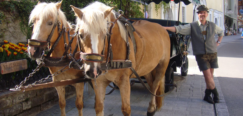 St. Wolfgang, Salzkammergut, Austria - Horses & carriage.jpg